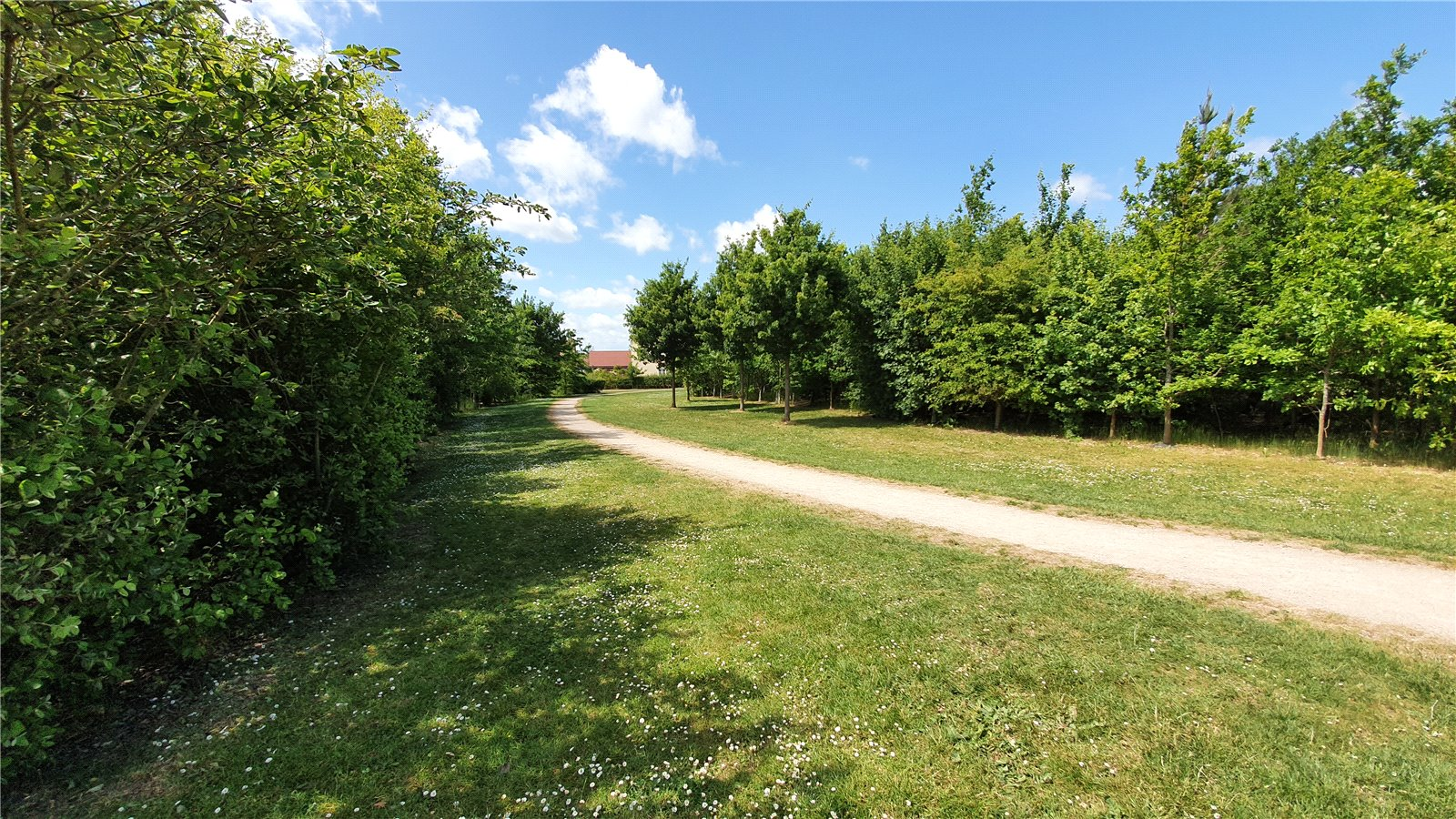 3 bed house for sale in Lannesbury Crescent, St Neots  - Property Image 10