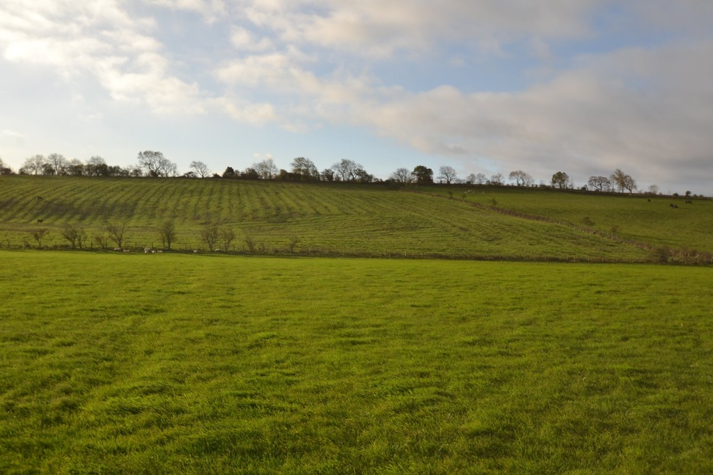 Farm land for sale in Lowgate, Hexham 2