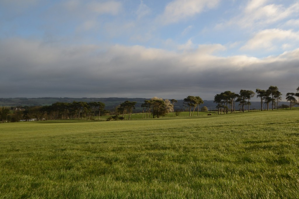 Farm land for sale in Lowgate, Hexham  - Property Image 4