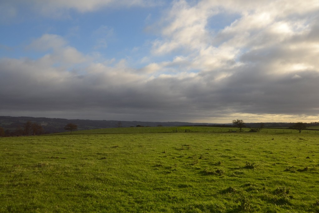 Farm land for sale in Lowgate, Hexham  - Property Image 5
