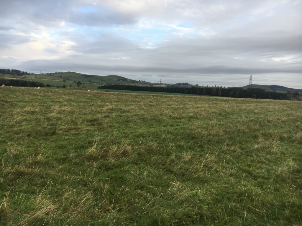 9.44 acres (3.82 hectares) of grassland to let on a grazing licence, on the outskirts of Whittingham village. PLEASE NOTE A CLOSING DATE FOR OFFERS HAS BEEN SET FOR 5PM FRIDAY 16TH FEBRUARY 2018