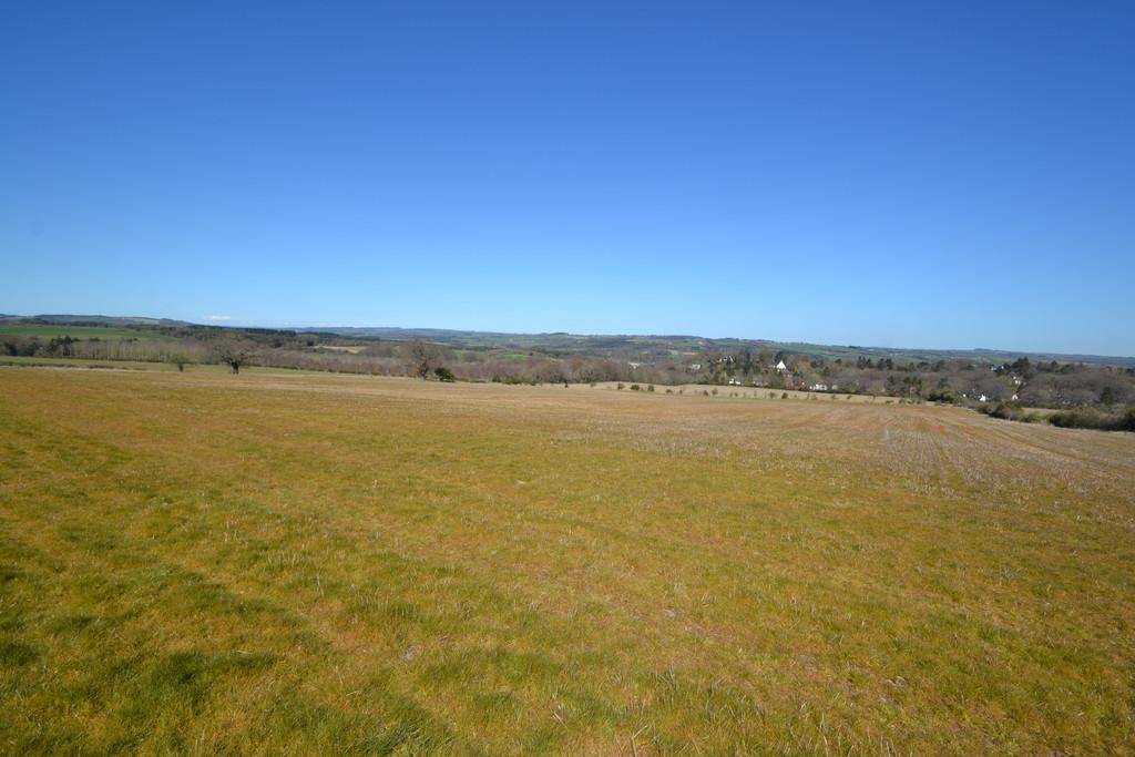 Farm land for sale, Stocksfield 2