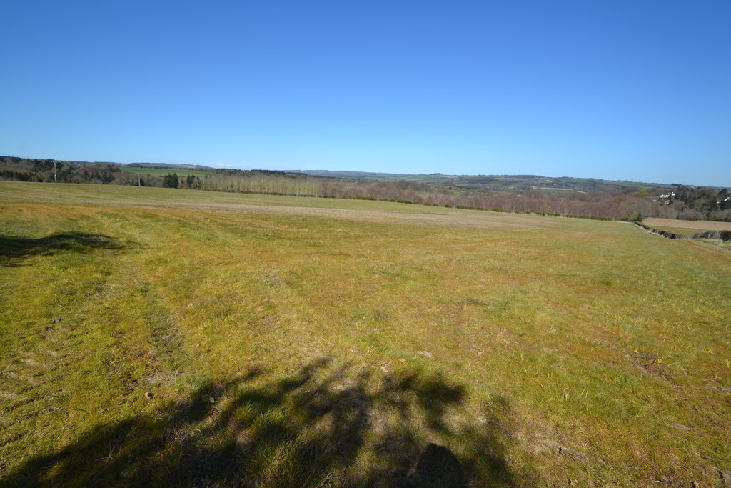 Farm land for sale, Stocksfield  - Property Image 4