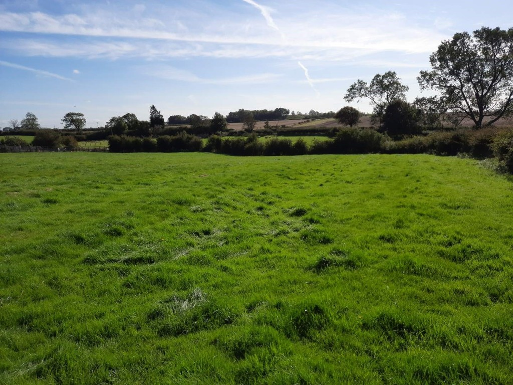 An excellent opportunity to purchase an attractive block of grassland with road frontage, conveniently located on the outskirts of Bishopton Village.  In total extending to 3.41 acres (1.38 ha). For sale as a whole by Private Treaty.