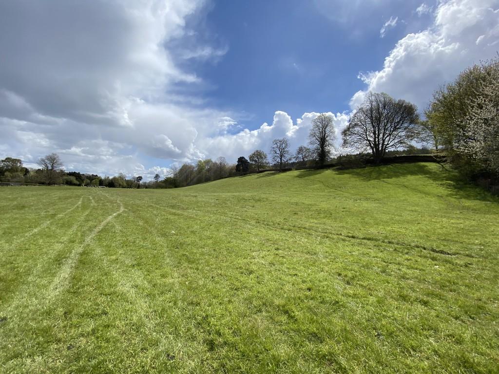 Farm land for sale, Corbridge 1