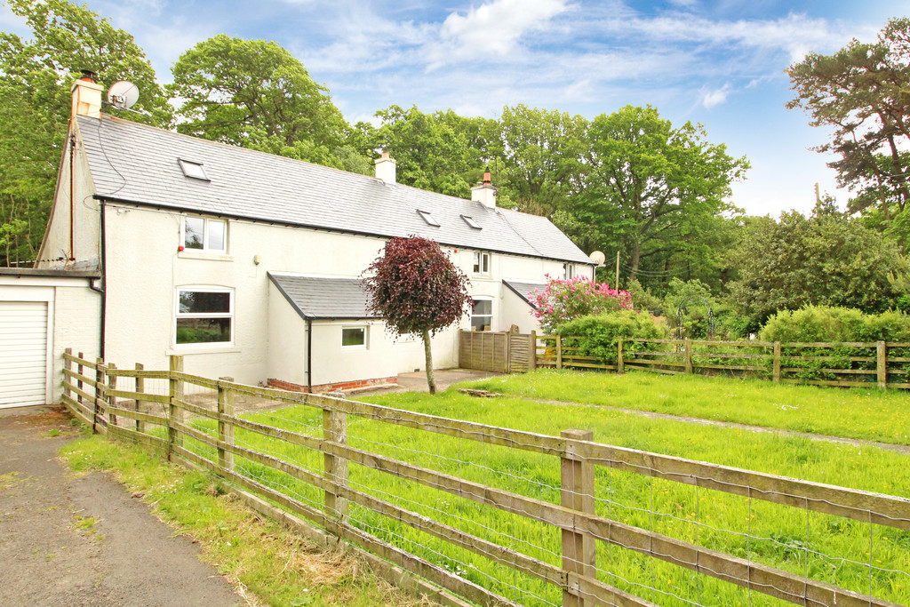 2 bed semi-detached house to rent 1