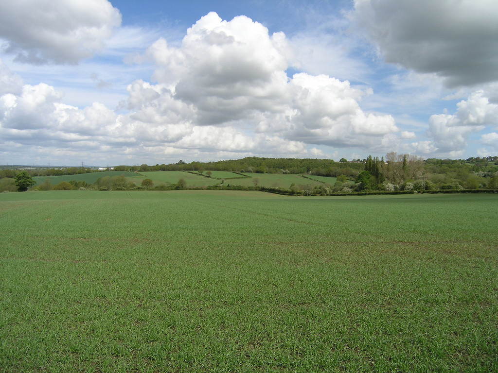 Farm land for sale in College Road, Sheffield 1