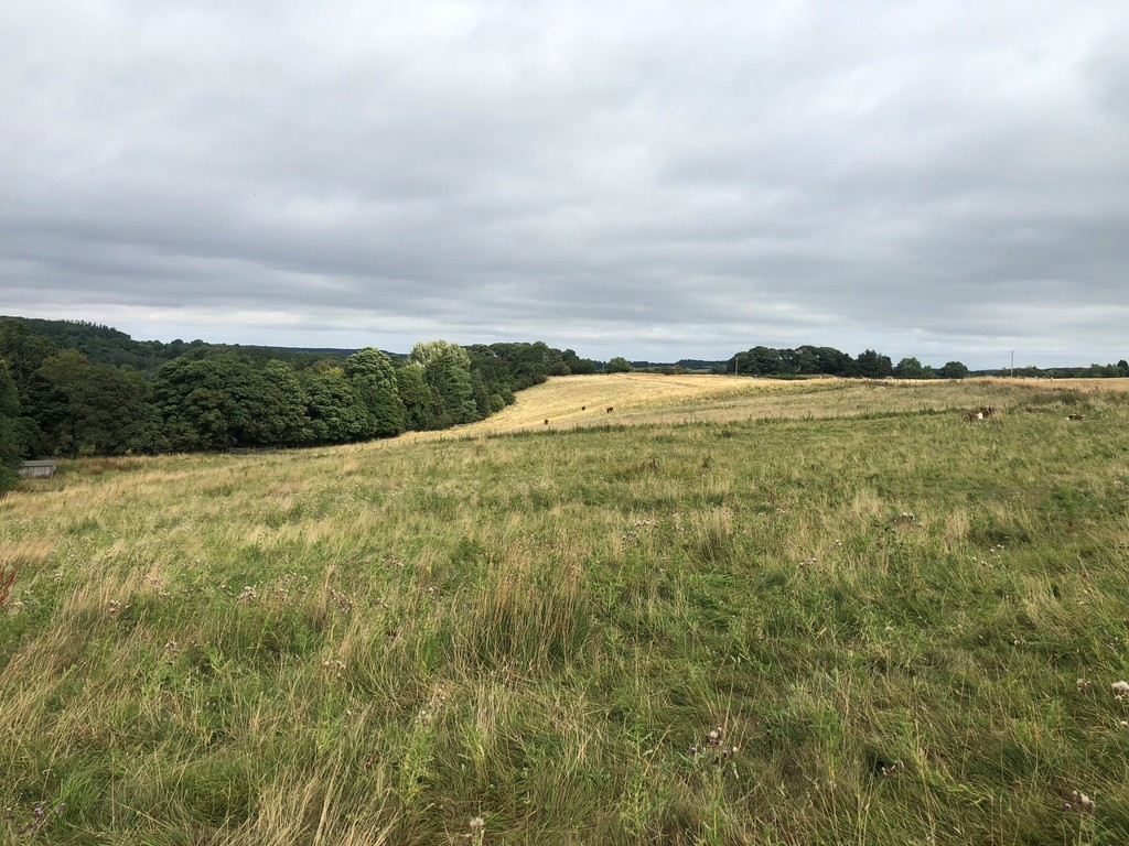Approximately 8.23 acres (3.33 ha) of predominantly grazing land. The land benefits from roadside access and is split into four conveniently sized paddocks, all of which are supplied by mains water. The land provides the basis of an ideal small holding within easy reach of Hexham.