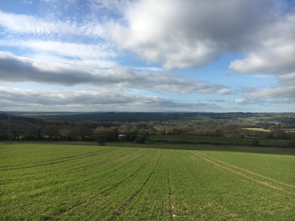This is a good opportunity to acquire a productive block of arable land, located in the picturesque Tyne Valley. Lot 2 extends to approximately 20.67 acres (8.36 hectares). The land is suitable for agricultural or equestrian purposes.
