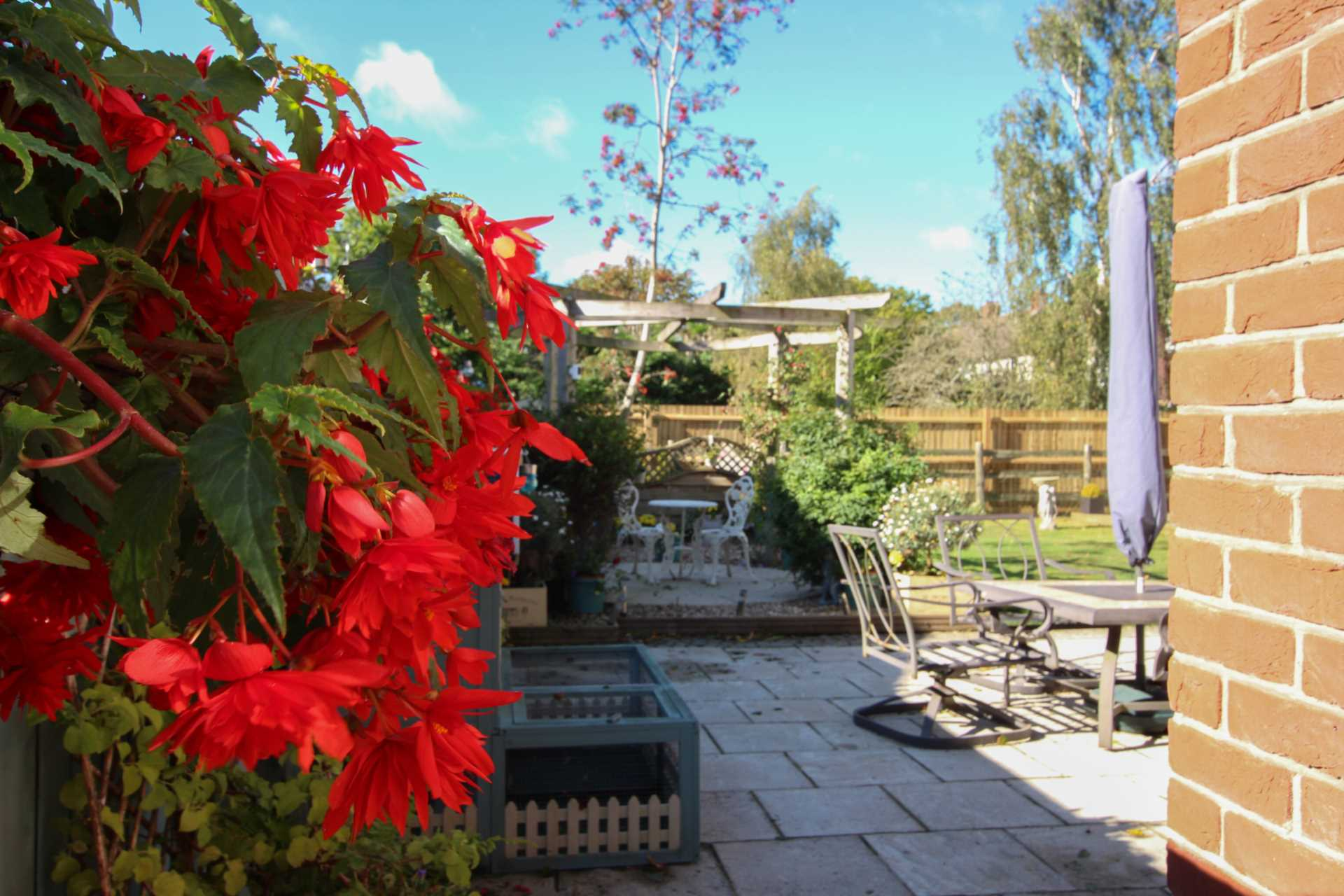 4 bed detached house for sale in Maple Vale, Whatcombe Lane, Winterborne Whitechurch, Blandford Forum 18